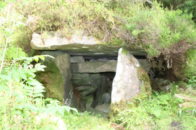 Passage Tomb, Cavan Burren