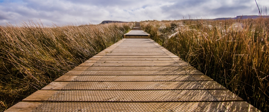 carl-meehan-flickr-cuilcagh-boardwalk